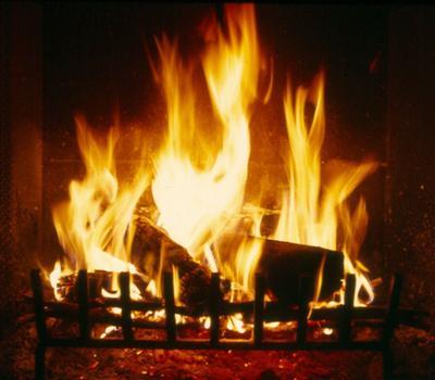 Log_fire_2