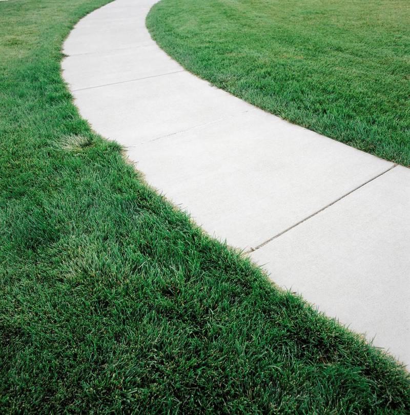 Grass_lawn_1